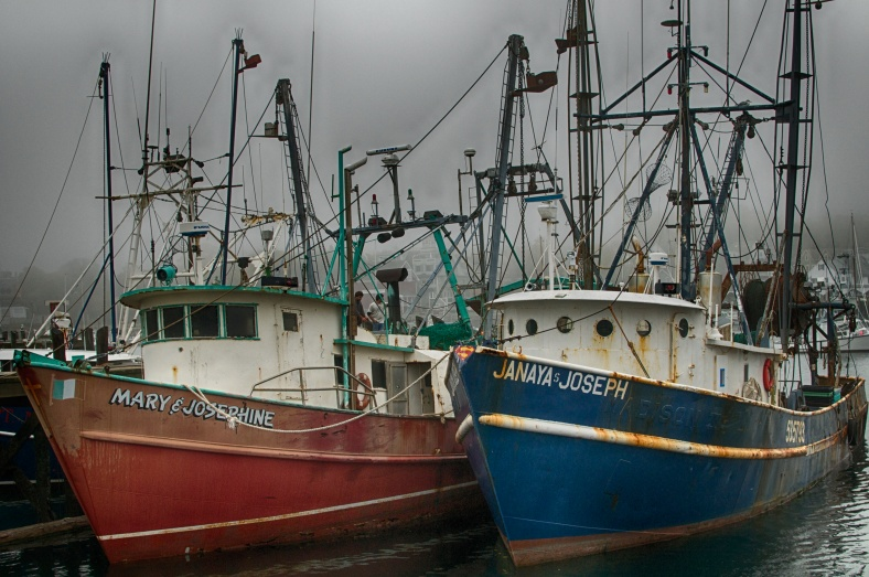 Fishing boats in Glouster Harbor, Mass.