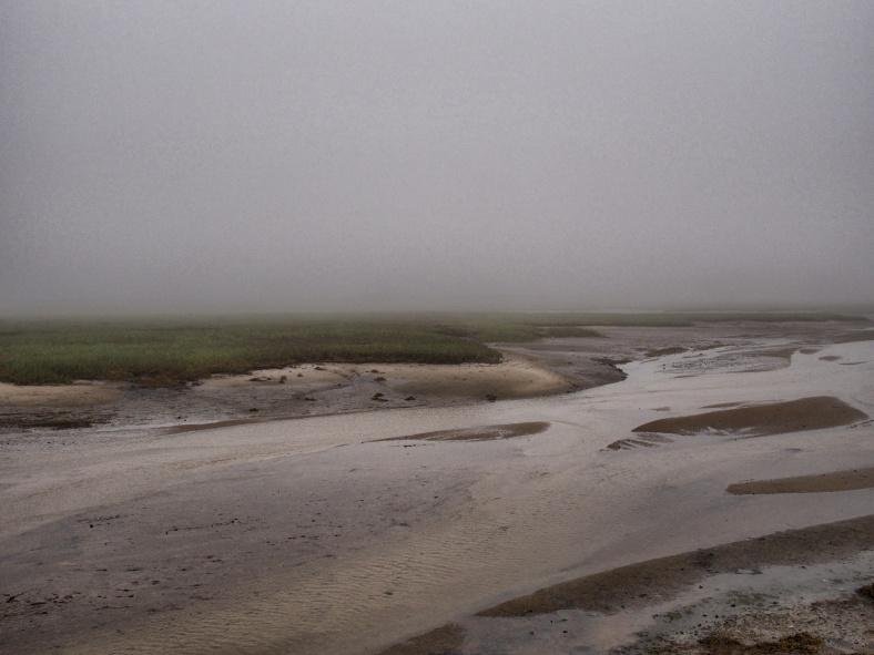 Fog settles over a marsh near Provincetown, Mass.